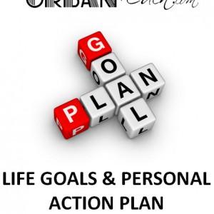 Life action plan